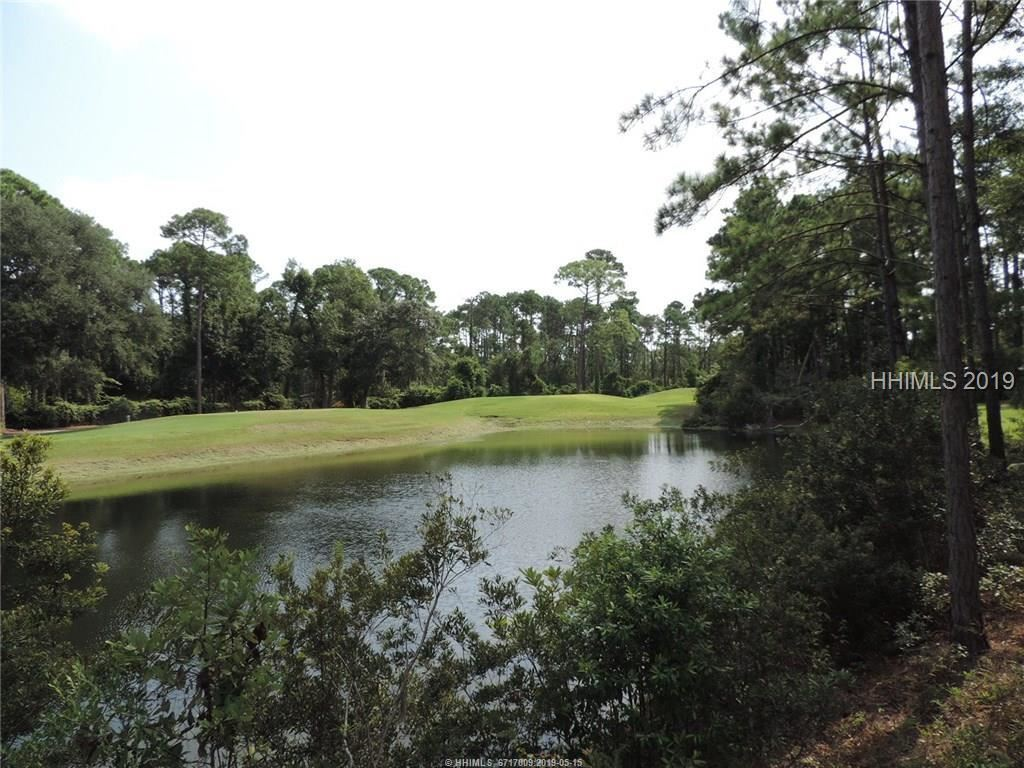 Photo for 18 Ellis Ct, Hilton Head Island, SC 29926 (MLS # 385874)