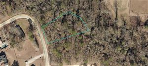 Photo of Lot 4 Lakeview Drive, Glennville, GA 30427 (MLS # 130145)