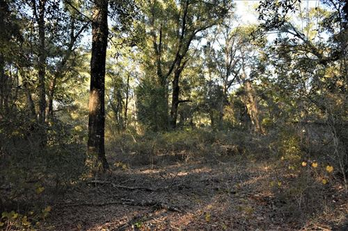 Photo of 2 Acres Magnolia Lane SE, Allenhurst, GA 31301 (MLS # 137612)