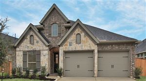 Photo of 238 North Bearkat Court, Montgomery, TX 77316 (MLS # 2983019)