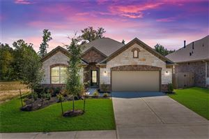 Photo of 188 Chestnut Meadow Drive, Conroe, TX 77384 (MLS # 72228019)