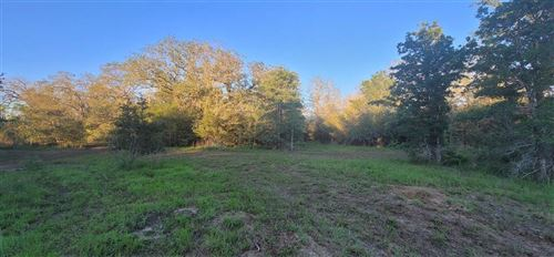 Photo of 1721 Wood Haven, Waelder, TX 78959 (MLS # 22275026)