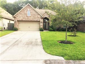 Photo of 19933 Driver Forest Drive, Porter, TX 77365 (MLS # 92731035)