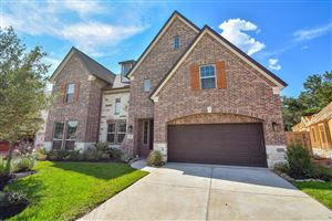 Photo of 217 Bronze View Drive, Montgomery, TX 77316 (MLS # 18614042)