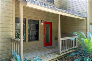 Photo of 78 Cokeberry Court, The Woodlands, TX 77380 (MLS # 784048)