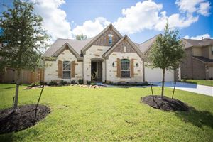Photo of 18859 Collins View Drive, New Caney, TX 77357 (MLS # 33839060)