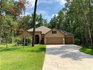 Photo of 11033 Shadow View Drive, Conroe, TX 77304 (MLS # 41215099)