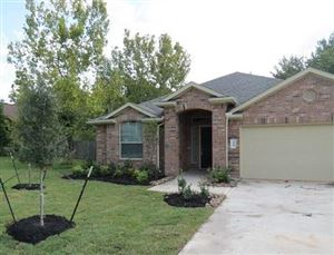Photo of 318 Lake View Drive, Montgomery, TX 77356 (MLS # 7145104)