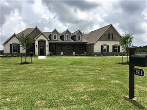 Photo of 6911 Bayou Trail Drive, Alvin, TX 77511 (MLS # 76952104)