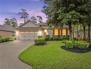 Photo of 111 Winslow Hill Place, Montgomery, TX 77316 (MLS # 24149107)