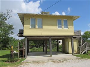 Photo of 3006 Todville Road, Seabrook, TX 77586 (MLS # 2445108)