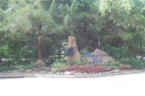 Photo of 329 Blue Heron Drive, Montgomery, TX 77316 (MLS # 29580137)