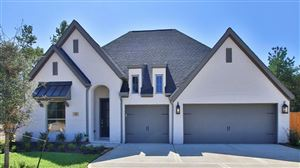 Photo of 129 Bronze Bow Drive, Montgomery, TX 77316 (MLS # 95248141)