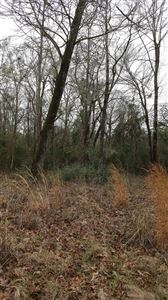 Photo of 0000 Woodland Shores Drive, Point Blank, TX 77364 (MLS # 485148)