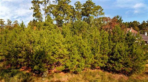 Photo of 30 New Oak Trail, Kingwood, TX 77346 (MLS # 63871151)