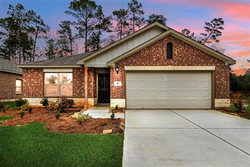 Photo of 191 Courageous Side Way, Magnolia, TX 77354 (MLS # 20627172)