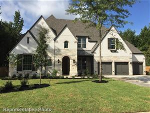 Photo of 125 Larkhaven Drive, Montgomery, TX 77316 (MLS # 28782174)