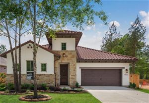 Photo of 107 Eryngo Park, Montgomery, TX 77316 (MLS # 74156182)