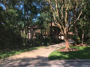 Photo of 46 Indian Clover Drive, The Woodlands, TX 77381 (MLS # 50074184)