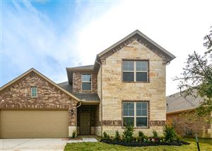 Photo of 12168 Pearl Bay Court, Conroe, TX 77304 (MLS # 36577188)