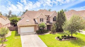 Photo of 43 N Winsome Path Circle, Spring, TX 77382 (MLS # 80863193)