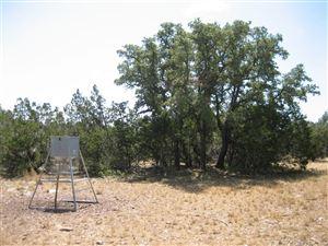 Photo of 195 Headwater Drive, Hunt, TX 78058 (MLS # 60956208)