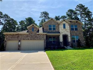 Photo of 8002 Shadow Park Court, Conroe, TX 77304 (MLS # 92618211)