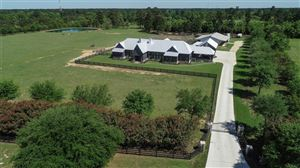 Photo of 323 High Meadow Ranch Drive, Magnolia, TX 77355 (MLS # 40630220)