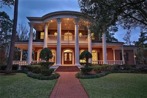 Photo of 16615 Southern Oaks Drive, Houston, TX 77068 (MLS # 63921221)