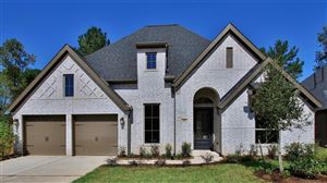 Photo of 108 Bronze Bow Drive, Montgomery, TX 77316 (MLS # 61117227)