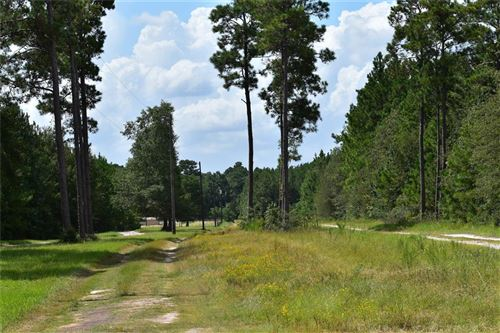 Photo of 20972 Gene Campbell Boulevard, New Caney, TX 77357 (MLS # 17731231)