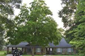 Photo of 14743 Lepus Drive, Willis, TX 77318 (MLS # 14484234)