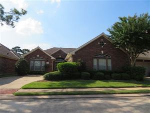 Photo of 316 Parkwood Village Drive, Friendswood, TX 77546 (MLS # 14701241)