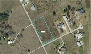 Photo of Lot 13 Longhorn Loop Court, New Waverly, TX 77358 (MLS # 48782261)