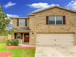 Photo of 8230 Hall View Drive, Houston, TX 77075 (MLS # 76175272)