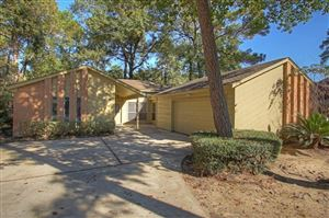Photo of 6 Brushwood Court, The Woodlands, TX 77380 (MLS # 65786275)