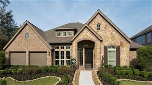 Photo of 23306 Ridge Spring Drive, New Caney, TX 77357 (MLS # 10231279)