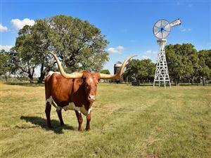 Photo of 236 Doss Spring Creek Road, Fredericksburg, TX 78624 (MLS # 29822283)
