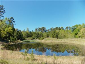 Photo of 10217 Paradise Valley, Conroe, TX 77304 (MLS # 20773285)