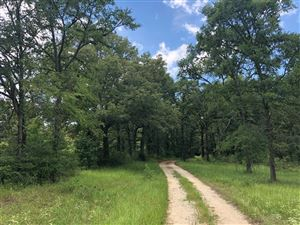 Photo of 12183 CR 232, Centerville, TX 75833 (MLS # 55113287)