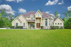 Photo of 27911 Summerton Drive, Spring, TX 77386 (MLS # 33380310)