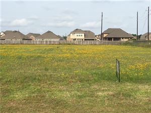 Photo of 0 Old Alvin Road, Pearland, TX 77581 (MLS # 77559311)