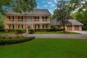 Photo of 6 N Longspur Drive, The Woodlands, TX 77380 (MLS # 30132314)