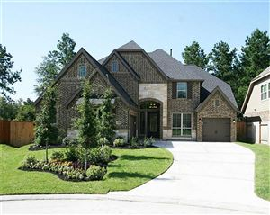 Photo of 143 Trophy Canyon Drive, Montgomery, TX 77316 (MLS # 18697323)