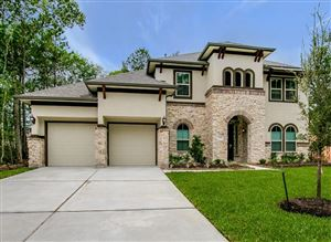 Photo of 32056 Autumn Orchard, Conroe, TX 77385 (MLS # 62376336)