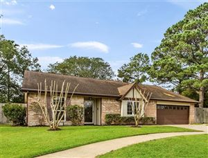 Photo of 115 Misty Brook Lane, League City, TX 77573 (MLS # 23319337)