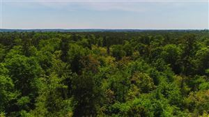 Photo of 384 Acres State Highway 75 North, Huntsville, TX 77320 (MLS # 27801339)