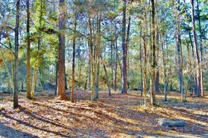Photo of TBD Magnolia, Trinity, TX 75862 (MLS # 77239347)