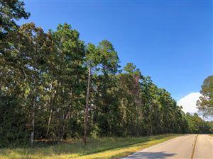 Photo of 48 Ac Waterwood Parkway, Huntsville, TX 77320 (MLS # 54486353)