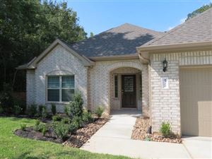 Photo of 4322 Windswept Dr Drive, Montgomery, TX 77356 (MLS # 3330361)
